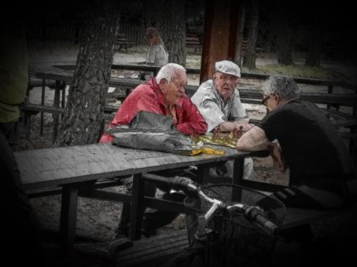 starsi panowie grający w szachy